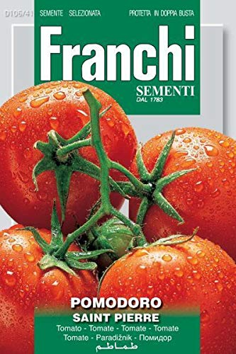 CROSO Keim Seeds Nicht NUR Pflanzen: i Gemüsesamen Tomate Saint Pierre