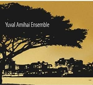 Yuval Amihai Ensemble