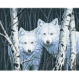 Pintura Dimensiones Paintworks por números Magia Blanca Acrílico Set de pintura