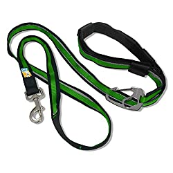 Kurgo 6Quantum (Tm) Hände Frei Hund Leine Für Walking, Laufen Oder Wandern & Reflektierende Hundeleine Mit Verstellbare Taille Gürtel, Gras Grün