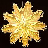 SIKORA FB53 beleuchteter großer Papierstern Stern EISKRISTALL Leuchte Weihnachten D:42cm
