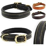 Classic-Line von Pear Tannery: Hundehalsband aus weichem Vollrindleder, L 46-56 cm, schwarz