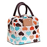 Best Bags - DWE Lunch Bag, Lovely Canvas Lunch Box For Review