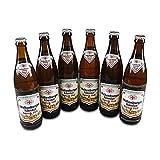 Weltenburger Kloster Barock Hell (6 Flaschen à 0,5 l / 5,6% vol.)