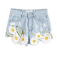 Fashion Women Casual Vintage Jeans Bottoms High Waist Floral Embroidery Denim Shorts
