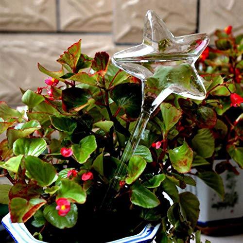 2 Stücke Pflanze Automatische Bewässerung Gerät Transparent Glas fünfzackigen Stern für Urlaub Indoor Outdoor Wasser Feeder -