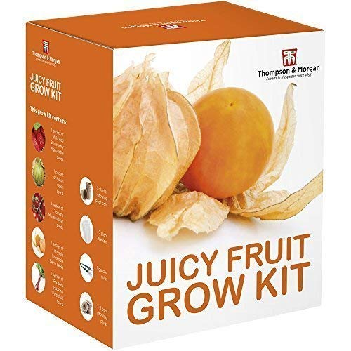 Thompson & Morgan Grow Kits Cadeau Boîtes - Succulent Fruitiers