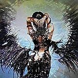 Peinture De Diamant 5D Fallen Angel Wings Girl 40x50cm/16x20in