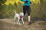 Ruffwear 3050-655M Front Range Ganztags-Hundegeschirr, M, Alpenglow pink - 9