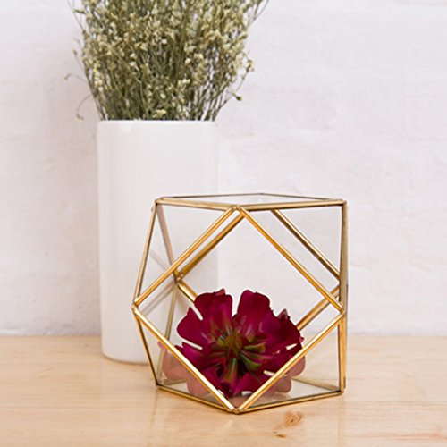 ometrische Terrarium Fußball Form Garten Display Blumentopf Indoor Outdoor Tischplatte Vase Herzstück Pflanzer Große für Sukkulenten Kakteen Fern Moos (Farbe : B) ()