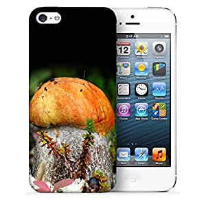 Snoogg Orange Mushroom Printed Protective Phone Back Case Cover For Apple Iphone 5 / 5S