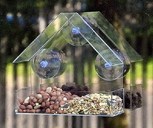 hanging-glass-window-bird-feeder-table-clear
