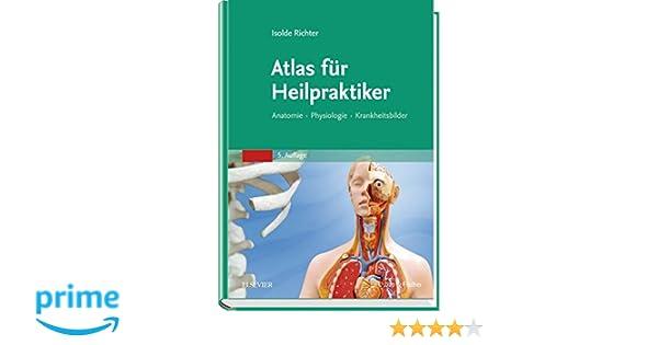 Atemberaubend Hinweise Zur Anatomie Und Physiologie Zeitgenössisch ...