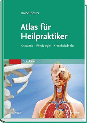 iker: Anatomie - Physiologie - Krankheitsbilder ()