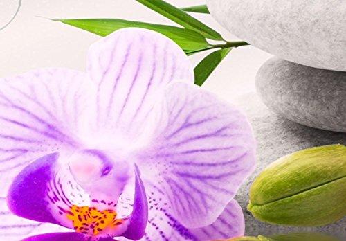 murando b-A-0020-b-n b-A-0020-b-o b-A-0020-b-p Buda flores hoja violeta rosado rojo 7