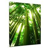 Bilderdepot24 Kunstdruck - Bambus in Thailand - Bild auf Leinwand - 60x80 cm 1 teilig - Leinwandbilder - Bilder als Leinwanddruck - Wandbild Pflanzen & Blumen - Sonnenlicht zwischen Bambusstämmen