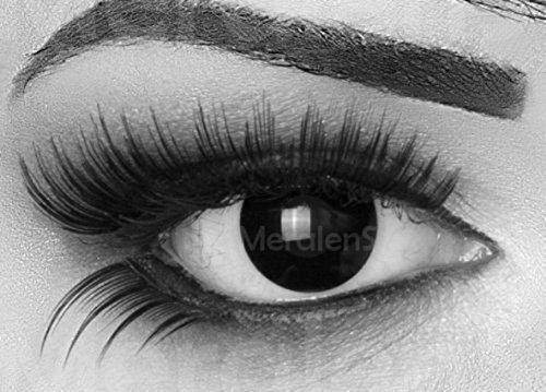 Funnylens 1 Paar farbige schwarze Crazy Fun black out Jahres Kontaktlinsen.Topqualität zu Fasching und Karneval mit gratis Kontaktlinsenbehälter ohne (Blackout Linsen)