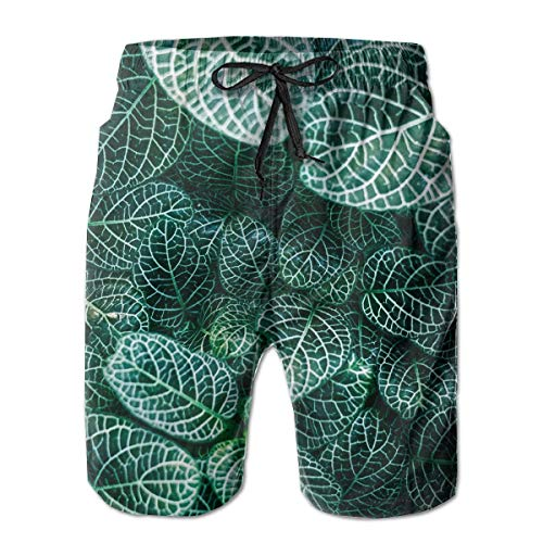 dfsdfsasdf Beach Shorts - Young Men Swim Trunks, Dry Fast Summer Surfing Pockets Shorts L - Hose Cherokee