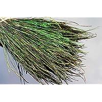 Tigofly - Lote de 400 Hilos de Plumas Naturales de Pavo Real para ninfas, Moscas húmedas y Moscas. Material para Atar Moscas de Cuerpo 10 – 20 cm de Longitud
