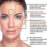 BIO Gesichtsserum mit reiner Organischen Hyaluronsäure und hochwertigem Vitamin C - Doppelte Menge 60ml – Anti Age Behandlung - Feuchtigkeitsspendend und belebend für das Gesicht – Anti Falten und Anti Flecken Vitamin C Serum - 5