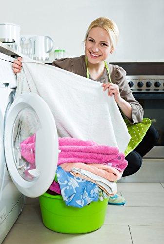 HiGloss Spotshooter Fleckenentferner hochwirksames Reinigungsmittel / Chlorfei / Waschkraftverstärker (1 kg)