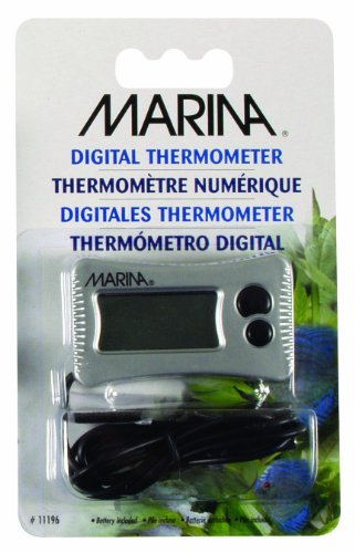 Marina Digital Thermometer 1
