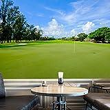 Golf On The Green Fairway Drapeau Sport murale Hobbie photo Wallpaper disponible en 8 tailles Gigantesque Numérique