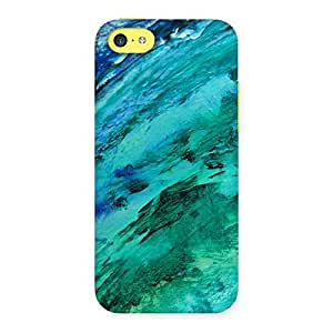 Paint Texture Back Case Cover for iPhone 5C