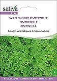Wiesenknopf, Pimpernelle | Bio-Wiesenknopf, Pimpernellesamen [MHD 12/2018]