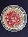 Eclectic Shop Uk Die Remembrance Day 2016 Alderney £5 Münze Silber