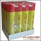 Flaminaire gas Universale 300 ml Scatola da 12 bombolette