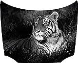 Motorhauben Tattoo Aufkleber Tiger schwarz weiß