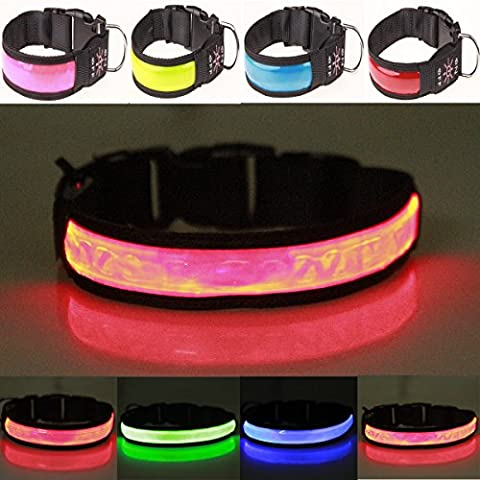 Reflective LED Pet Dog Collar to Keep Your Dog Safe, USB Rechargeable Night Safety Luminous Flashing Collar Light-up Dog Necklace Loop Collar with Adjustable Buckle - High Visibility & Improved Safety – 4 Colours, 3 Sizes (Red, Large)