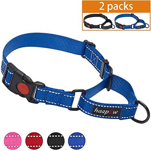 ndehalsband mit Schnellverschluss-Schnalle, reflektierendes Hundehalsband für kleine, mittelgroße und große Hunde, 2 Packungen, Medium, blau/schwarz ()