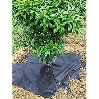 10PCS Cubierta de protección contra malezas transpirable e hidratante Tela de hierba de huerto no tejida Cubierta de suelo para control de malezas