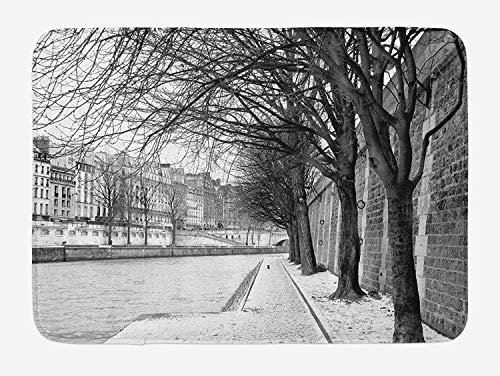 Icndpshorts Black and White Bath Mat, Seine River Paris City France Snowy Winter in The Urban City Trees, Plush Bathroom Decor Mat with Non Slip Backing, 23.6 x 15.7 Inches, Black White Grey Combo Winter Liner