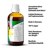 Bitterkraft Original In 5 Größen - Bitterstoffe Tropfen Nach Hildegard Von Bingen - Ausgewogene Kräuter Vor...