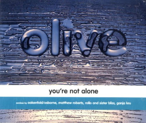 Preisvergleich Produktbild You're Not Alone / New Intl.Ver