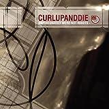 Songtexte von Curl Up and Die - Unfortunately We're Not Robots