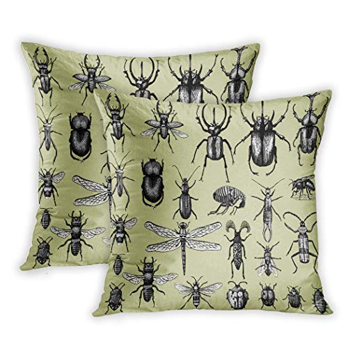 Nekkzi Cushion Covers Set of Two Print Big of Insects Bugs Beetles and Bees Many Species Sofa Home Decorative Throw Pillow Cover 16x16 Inch Pillowcase Hidden Zipper
