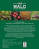 Der Wald: Natur, Nutzung und Geschichte unserer Wälder im Porträt - Detlev Arens