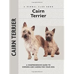 Cairn Terrier | Dog and Pet supplies Dogs co uk