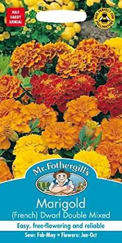 Mr. Fothergill's 14765 Marigold French Dwarf Double Mixed Flower