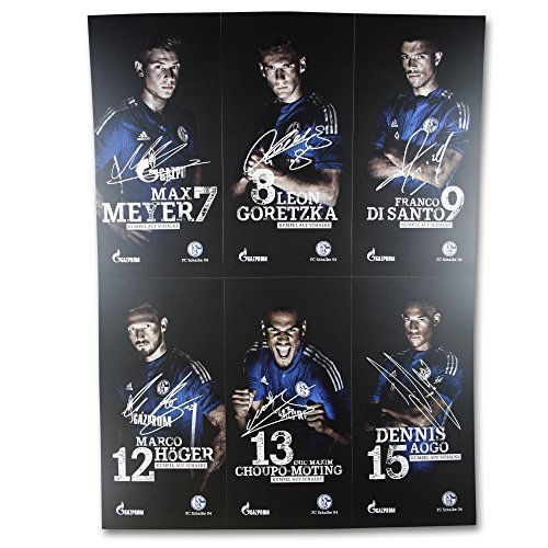 Schalke 04 Autogrammkarten / Sammelkarten / Autographs 30 Stück, Spieler, Trainer und Maskotschen S04