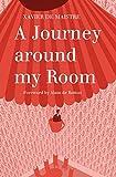 A Journey Around My Room (Alma Classics)