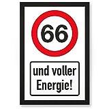 DankeDir! 66 Jahre Voller Energie, Kunststoff Schild - Geschenk 66. Geburtstag, Geschenkidee Geburtstagsgeschenk Sechsundsechzigsten, Geburtstagsdeko/Partydeko / Party Zubehör/Geburtstagskarte
