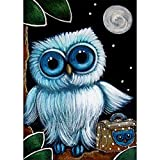 DIY 5D Diamond Painting, Crystal Rhinestone Embroidery Pictures Arts Craft for Home Wall Decor Cute Owl 11.8 x 15.7