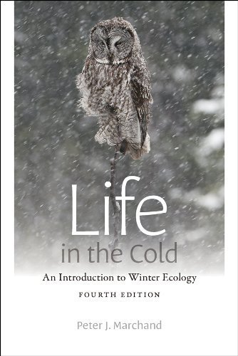 Life in the Cold: An Introduction to Winter Ecology, fourth edition 4th edition by Marchand, Peter J. (2014) Paperback