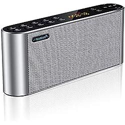 NeKan Enceinte Bluetooth Radio FM, Haut Parleur Bluetooth sans Fil Portable, Stéréo Bluetooth Speaker Audio HD Graves améliorés/Haut-Parleur Dual Driver