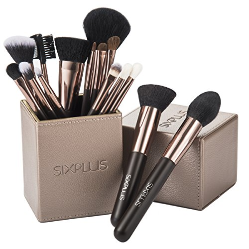 SIXPLUS Pinselset Kosmetik 15-Teiliges Professionelles Make Up Schminkpinsel Foundation Concealer Gesicht Lidschattenpinsel, mit Magnetische Make-up Pinsel Behälter in Braun (Make-up Pinsel Set-braun)